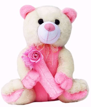 Cream and Pink Teddy Bear With Flowers,  teddy bear with roses pink onine