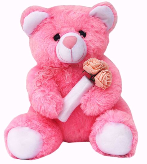 Pink Teddy with Roses 40cms , pinkrose teddy online