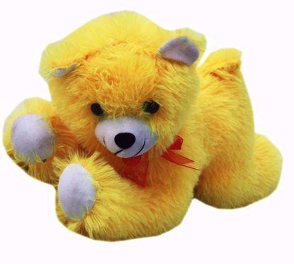 Yellow dog Teddy , teddy bear dog  online