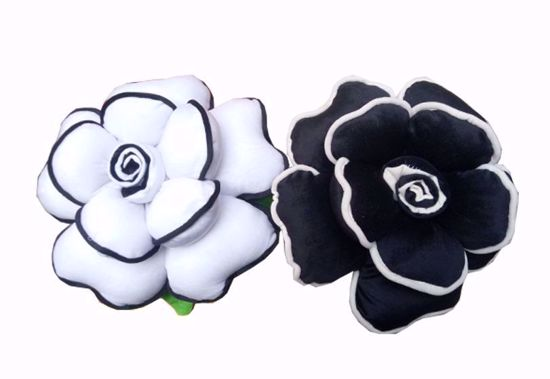 Picture of pillow white and black