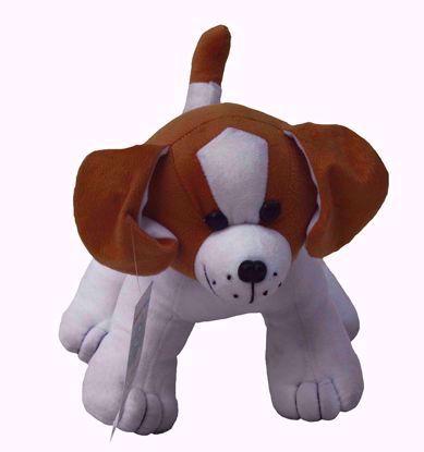 white-standing-dog