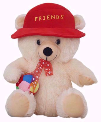 Friend Teddy Bear