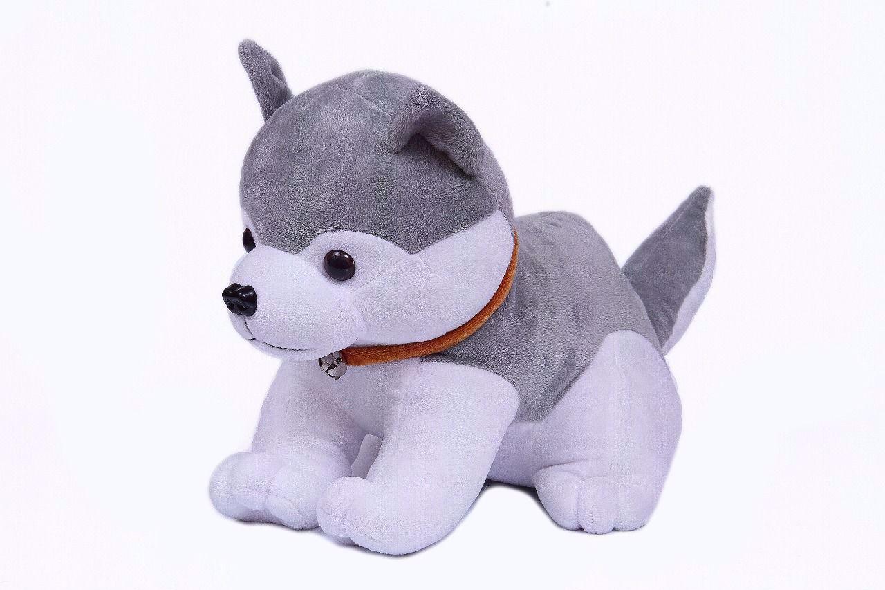 Soft Dog