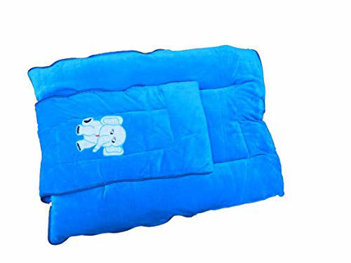 Baby's Sleeping and Carry Bag 0-6 Months -Blue